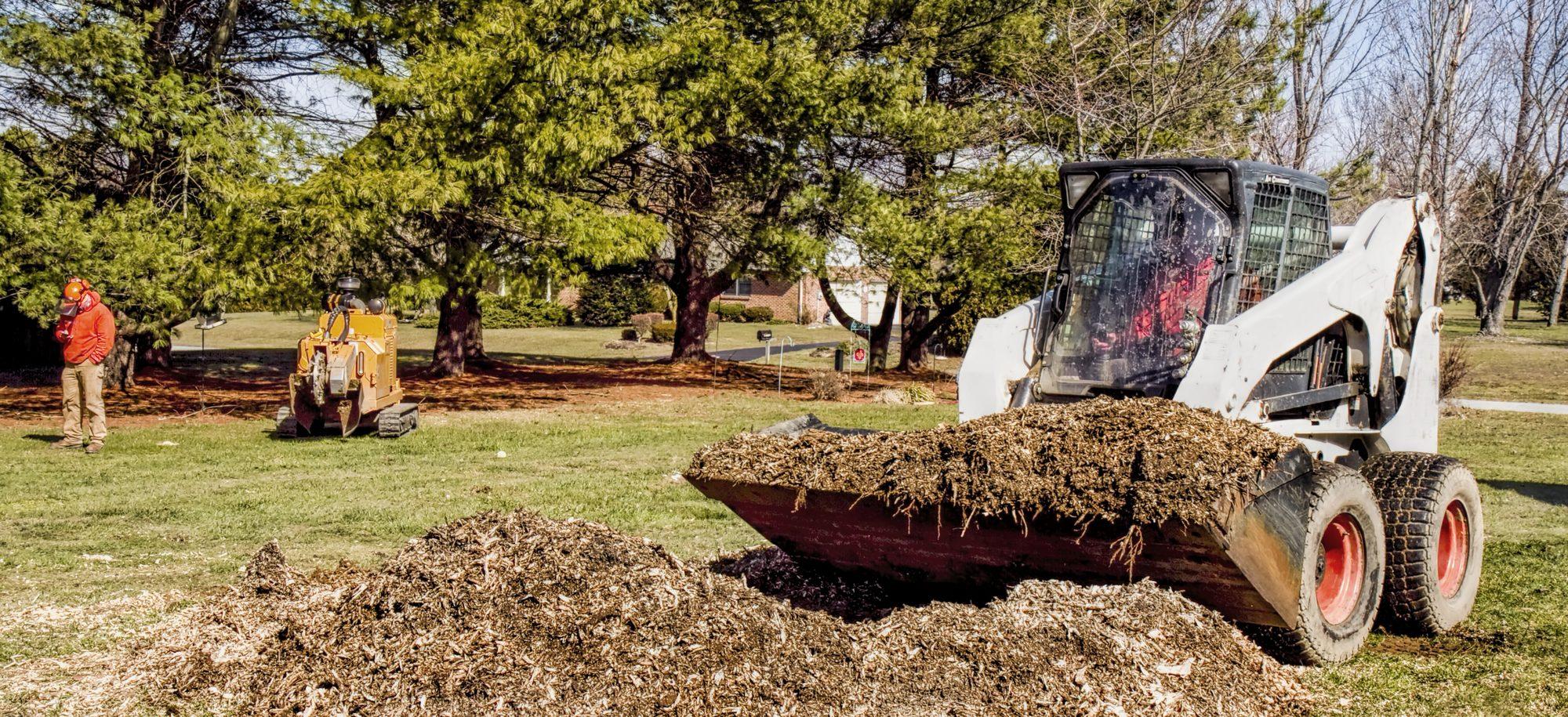 dozer removing tree debris - Big Easy Tree Removal